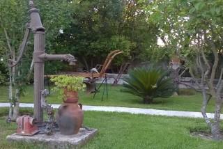 facilites baha ammes garden-10
