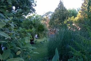 facilites baha ammes garden-13