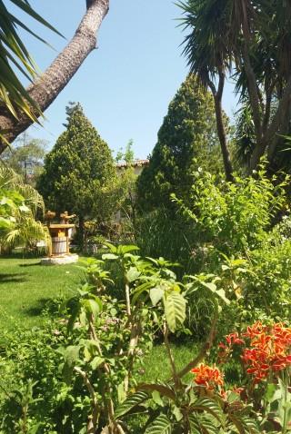 facilites baha ammes garden-19