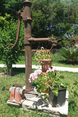 facilites baha ammes garden-24