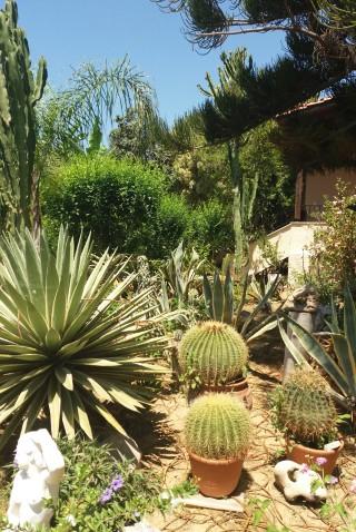 facilites baha ammes garden-29