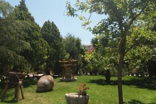 facilites baha ammes garden-30
