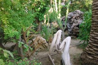 facilites baha ammes garden-33