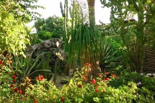 facilites baha ammes garden-35