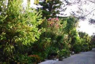 facilites baha ammes garden-37