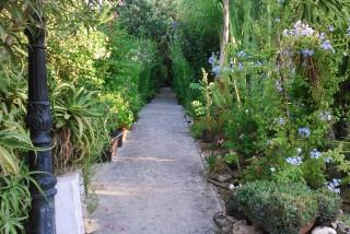 facilites baha ammes garden-38