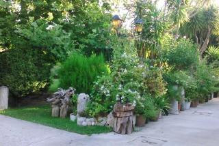 facilites baha ammes garden-39