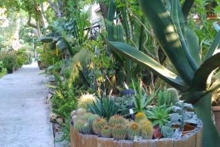facilites baha ammes garden-40