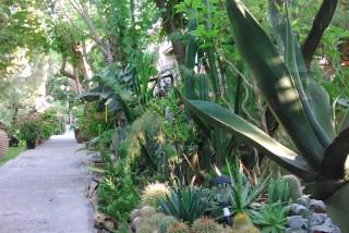 facilites baha ammes garden-41