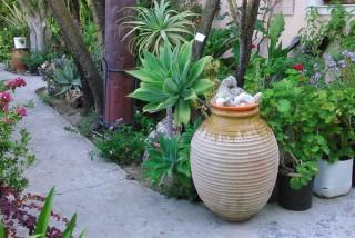 facilites baha ammes garden-43