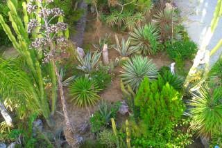 facilites baha ammes garden-50