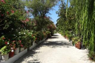facilites baha ammes garden-56